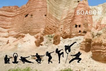 Boabom - Tibetaanse Inner Power