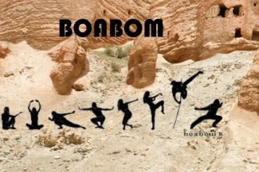 Internationale workshop Boabom